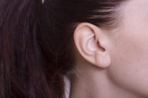耳でいきいきピチピチ